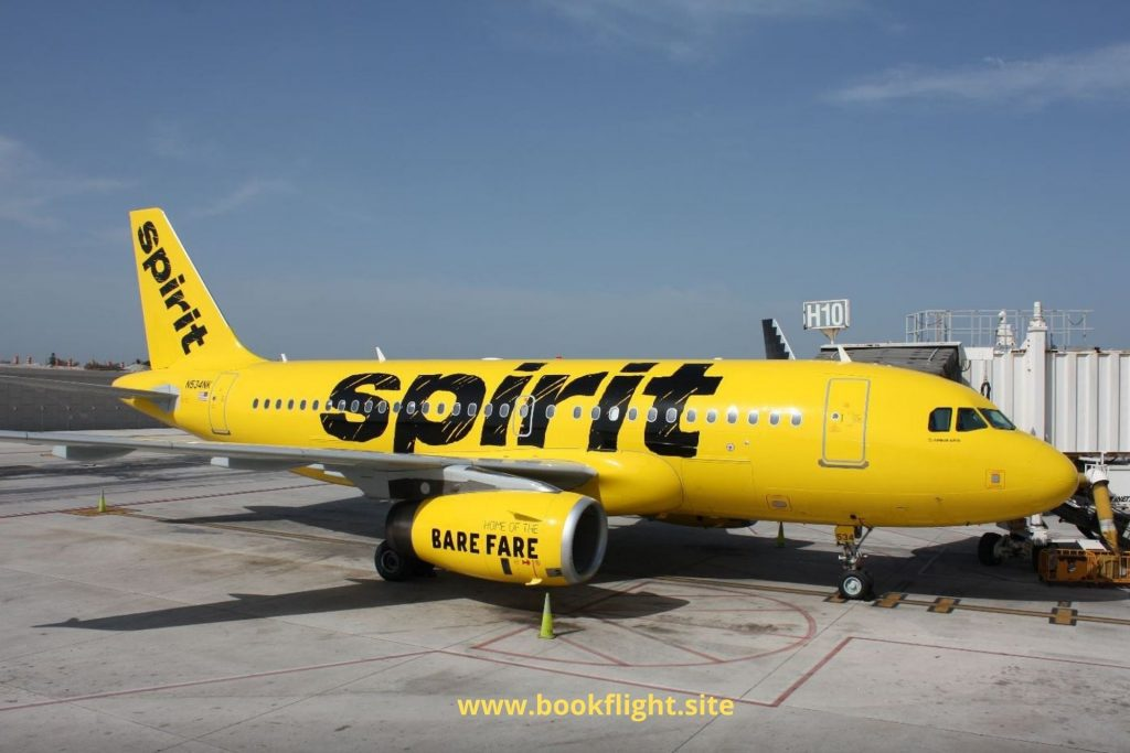 spirit airlines check in